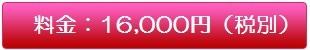 料金:16,000円(税別)